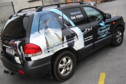 Dingle Oceanworld - Partial Vehicle Wrap