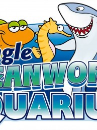 Dingle Oceanworld Aquarium - Graphic Design