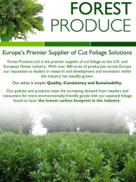 Forest Produce - Design