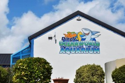 Dingle Oceanworld Aquarium - Digital Printed Composite Aluminium